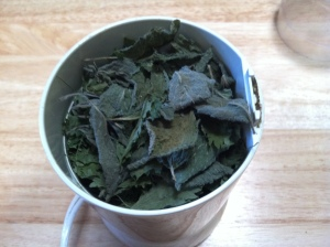 Dried nettle in coffee grinder