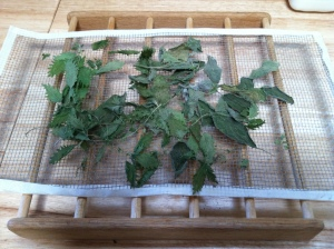 Homemade drying rack with nettles